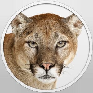 installesd-mountain-lion